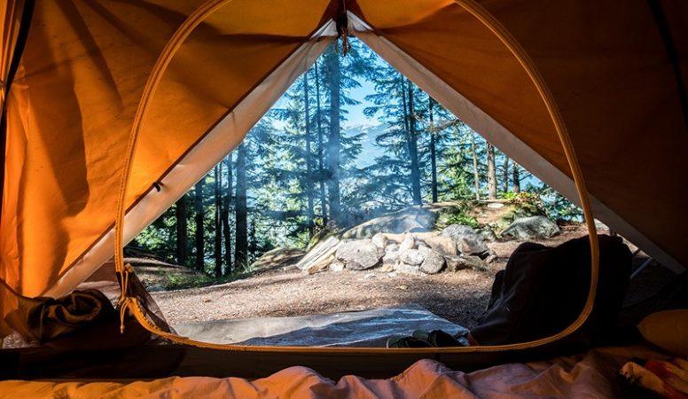 Rebamboo_camping